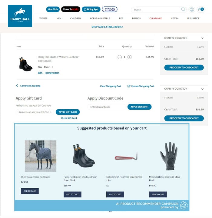 Harry Hall's Ai-product recommenders on the basket page